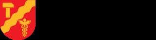 Tampereen kaupungin vaakunalogo